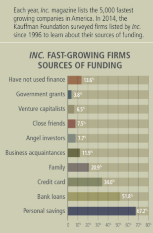 Figure 1: Sources of Fast Growth Company Funding